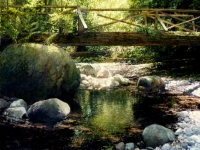 brothers-creek-30-x-30-oil